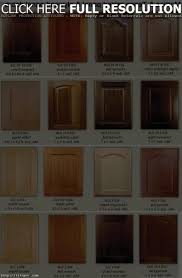 Door Styles For Kitchen Cabinets by Kitchen Cabinet Door Styles Pictures Modern Cabinets