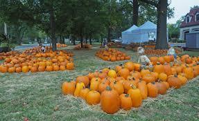 Pumpkin Patch St Louis Mo by Webster Hills Umc