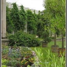 garten und landschaftsbau ausbildung ausbildung garten und landschaftsbau berlin optimale pic und