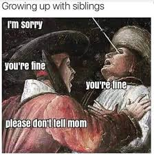 Funny Sibling Memes - top 27 funny sibling quotes quotes and humor