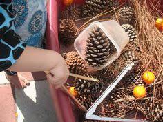 thanksgiving sensory table sensory table ideas