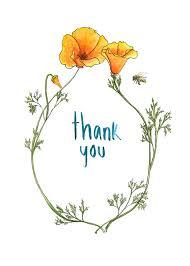 hnadmade california poppy 5x7 thank you cards greeting card