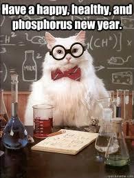 Happy New Year Meme 2014 - happy new year cats vs cancer