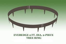 tree ring coffee table everedge tree rings kinsman garden