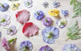 Where To Buy Edible Flowers - how to crystallise flowers like the victorians telegraph