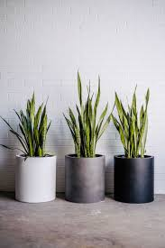 pots and planters taylored stone