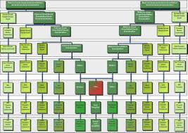 surprises in the family tree genealogy chart and cousins
