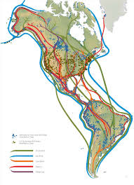 Migration Map Atlantic Flyway Map Google Search Bird Migration Pinterest