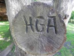 initials carved in tree initials carved in tree trunk stock photo image of rings