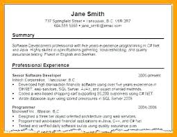 resume summary exles sle of resume summary