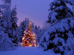 Christmas Tree High Resolution Christmas Tree Desktop Pictures Http Wallpapic Com High
