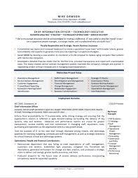sample executive resumes finance executive summary financial executive resume template finance executive summary finance executive summary