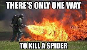 Kill Spider Meme - there s only one way to kill a spider absolutely i mean you have