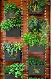 Hanging Plants For Patio 9 Diy Herb Garden Ideas Handy U0026 Homemade Herb Gardening