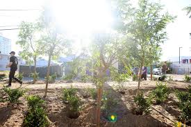 memorial garden las vegas businesses volunteers build memorial garden for