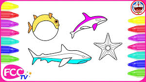 how to color globefish shark orca kids coloring pages