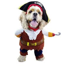 pet costume halloween compare prices on pet costume halloween online shopping buy low