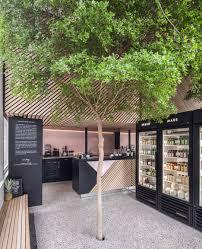 standard studio adds living tree to interior of juice shop