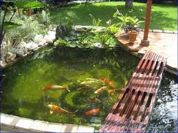 small backyard ponds pictures home design ideas
