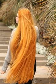 1563 best hair images on pinterest hairstyles long hair and