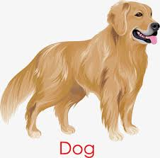 golden retriever dog golden hand painted photo png and vector
