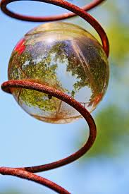 Glass Globes For Garden Free Images Branch Leaf Flower Green Reflection Red Color