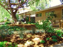 Landscaping Ideas For Backyard With Dogs by What Does A Water Wise Drought Tolerant Yard Look Like Julie