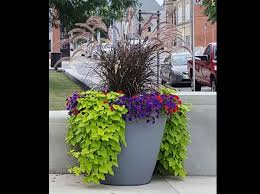 Extra Large Planters by Kenton Ohio Earthplanter Commercial Self Watering Planters