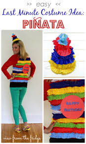 Birthday Halloween Costume Last Minute Diy Halloween Costumes View From The Fridgeview From