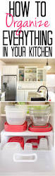 Tips For Organizing Your Kitchen Cabinets How To Organize Everything In Your Kitchen Polished Habitat