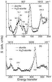 neutron spectroscopic study of synthetic alunite and oxonium