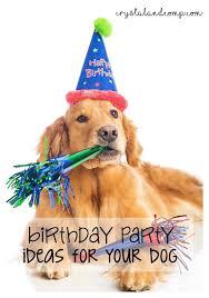 dog birthday party crystalandcomp