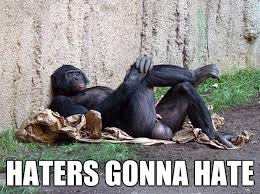 Hater Gonna Hate Meme - haters gonna hate hater monkey quickmeme