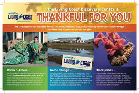 thanksgiving card message ideas say u201cthank you u201d before you say u201cplease u201d u2013 the nonprofit guru