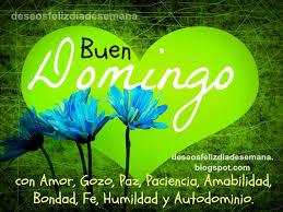 imagenes de amor para el domingo feliz domingo con amor gozo y paz imágenes y deseos feliz día de