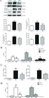 nab floor plan effect of nab on the expression of tlr4 signals pathway and