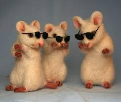The Blind Mice 14 Best Three Blind Mice Images On Pinterest Shrek Costume