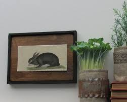 Rabbit Home Decor Home Decor Vintage Rabbit Country Chic Kitchen Farmhouse Wall