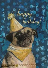 lovely funny birthday quotes and wishes laugh away regarding weird