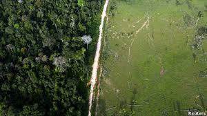 Estudo comprova que desmatamento da Amazônia afeta chuvas até