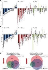 paternally expressed imprinted genes establish postzygotic