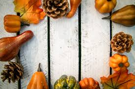 thanksgiving pumpkin decorations free images plastic fall food produce vegetable autumn