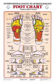 Blank Body Map Template by 31 Printable Foot Reflexology Charts U0026 Maps Template Lab