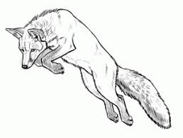 how to draw foxes step by step forest animals animals free
