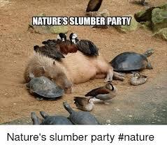 Slumber Party Meme - natures slumberparty nature s slumber party nature meme on me me