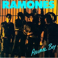 boy photo album animal boy