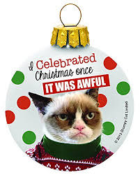 i celebrated once it was awful grumpy cat