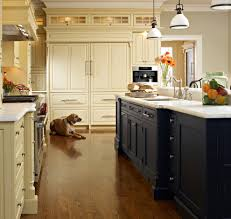 Black Cabinet Kitchen Navy Kitchen Cabinets Kitchen Transitional With Beige Wall Black