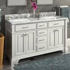 60 Double Sink Bathroom Vanity Reviews Darby Home Co Michael 60