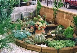 cura giardino giardini piante grasse piante grasse realizzazioni con le